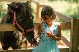 катание на лошадях для детей