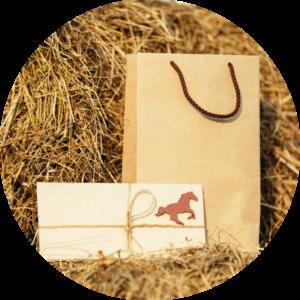подарочный сертификат на покататься на лошадях