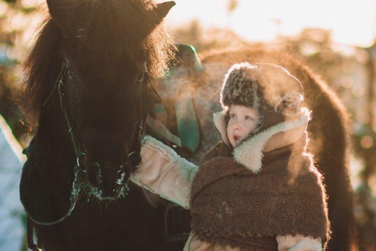 пони с ребенком фото