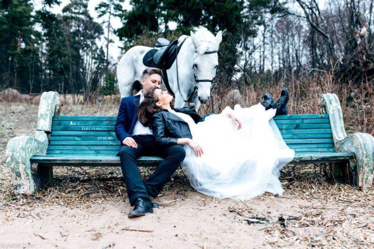 лошадь на финском заливе свадьба