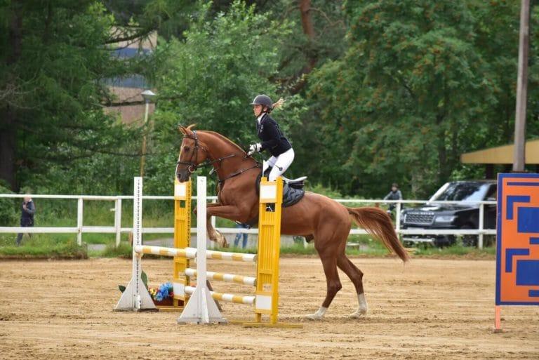 выступление по конному спорту