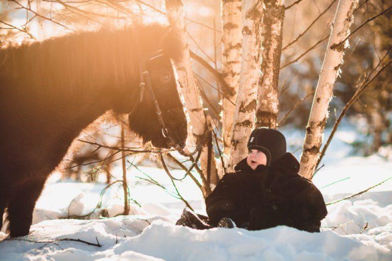 зимняя фотосессия с пони