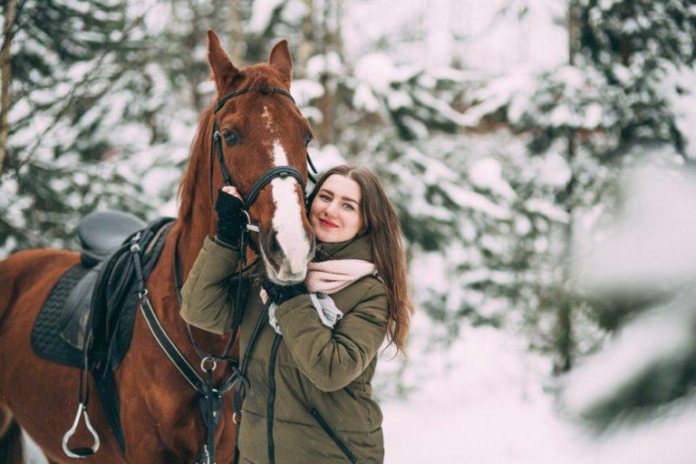 фото лошадь в лесу