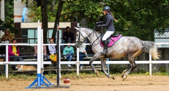 конный спорт в Санкт-Петербурге